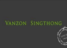 VANZON SINGTHONG CO.,LTD logo
